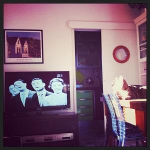 Domenica in Città: Mattina  in palestra, pranzo salutista, primo pomeriggio sul divano a leggere del bello delle Metropoli in compagnia di un Gattone e di uno speciale sul Quartetto Centra